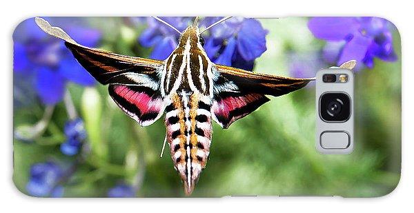 Horned Moth Galaxy Case