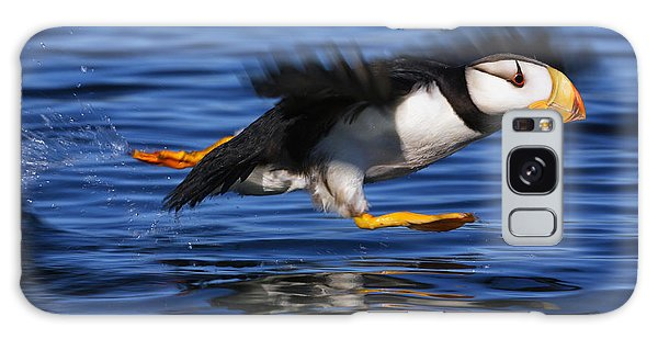 Horizontal Galaxy Case - Horned Puffin  Fratercula Corniculata by Marion Owen