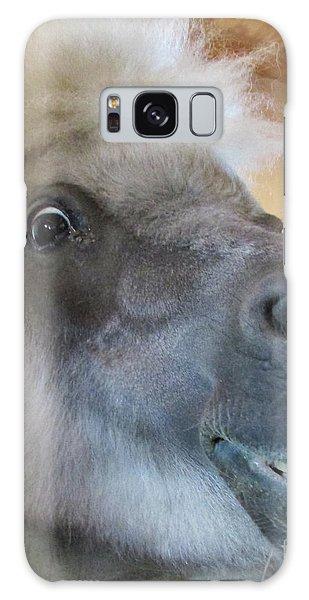 Horse 11 Galaxy Case