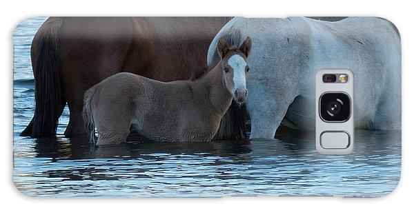 Horse 9 Galaxy Case