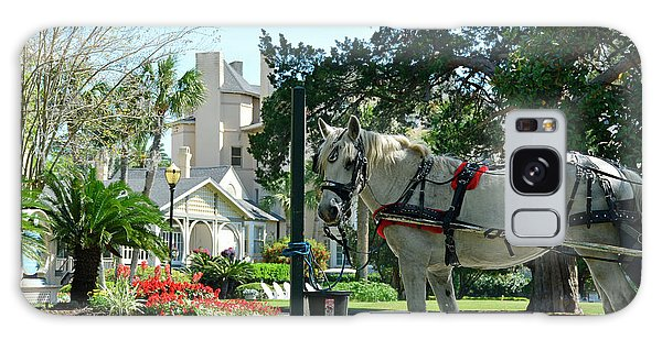 Horse And Jekyll Lsland Club Hotel Galaxy Case by Bruce Gourley