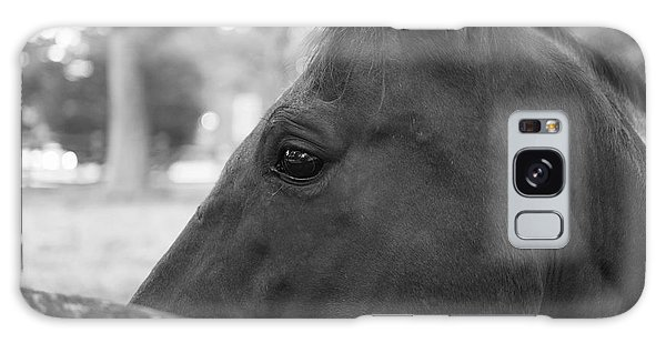 Horse At Fence Galaxy Case