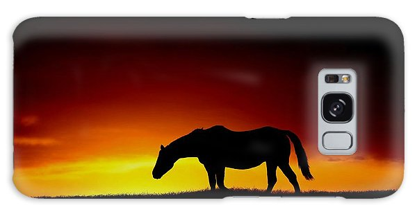 Horse At Sunset Galaxy Case