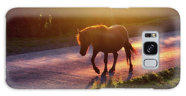 Horse Galaxy Case - Horse Crossing The Road At Sunset by Mikel Martinez de Osaba