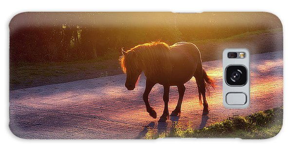 Horse Crossing The Road At Sunset Galaxy Case