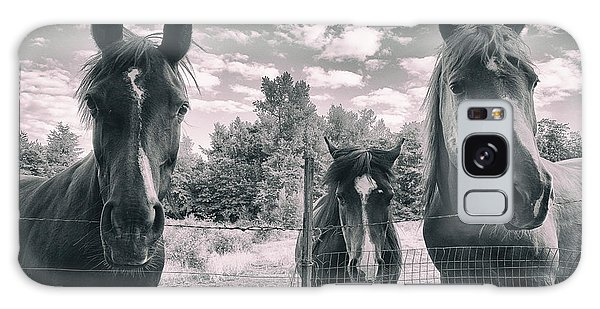 Horse Family Galaxy Case