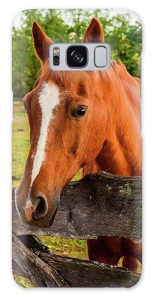 Horse Friends Galaxy Case