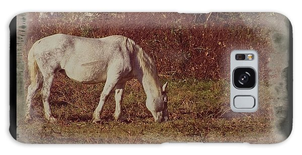 Horse Grazing Galaxy Case