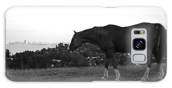 Horse On Horse Hill Galaxy Case