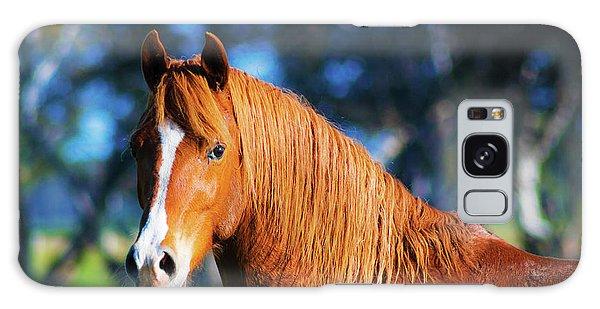 Horse Portrait  Galaxy Case
