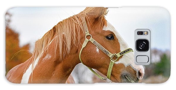 Wellsboro Galaxy Case - Horse Profile During Fall by Krystal Billett