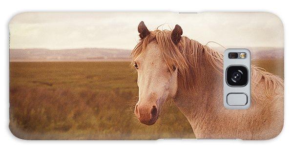 Wild Horse Galaxy Case