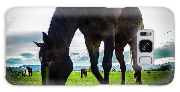 Horse Time Galaxy Case