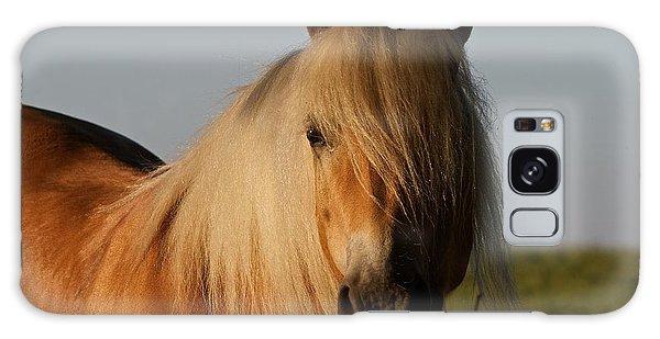 Horse With No Name Galaxy Case