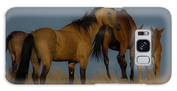 Horses 1 Galaxy Case