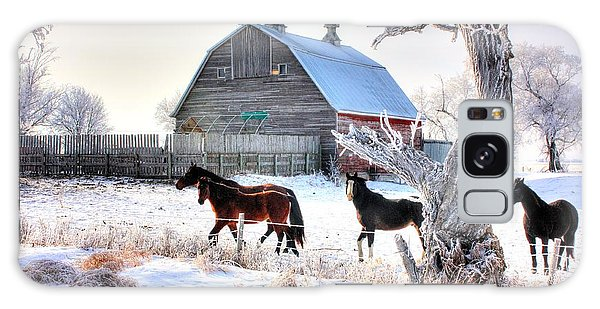 Horses And Barn Galaxy Case