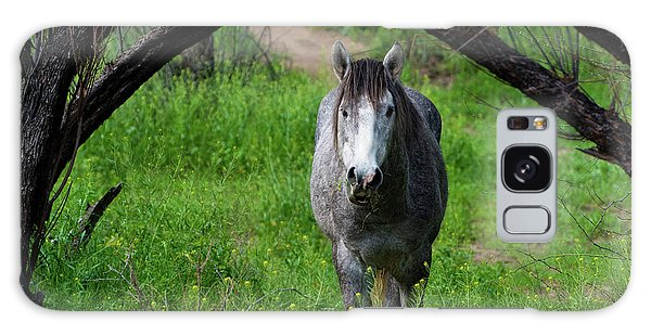 Horse's Arch Galaxy Case