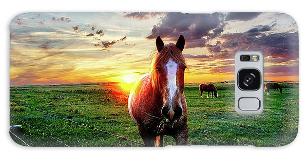 Horses At Sunset Galaxy Case