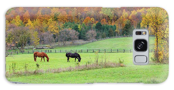 Horses Contentedly Grazing In Fall Pasture Galaxy Case