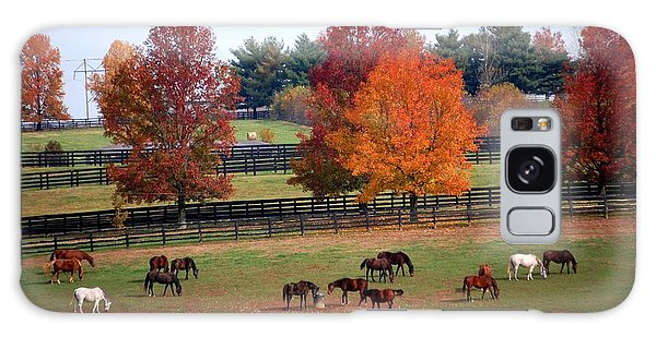 Horses Grazing In The Fall Galaxy Case