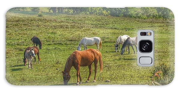 1003 - Horses In A Pasture I Galaxy Case