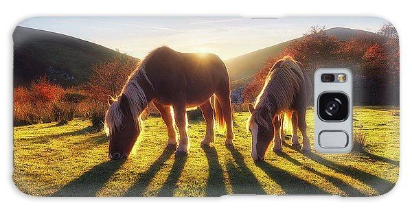Horses In Austigarmin Galaxy Case