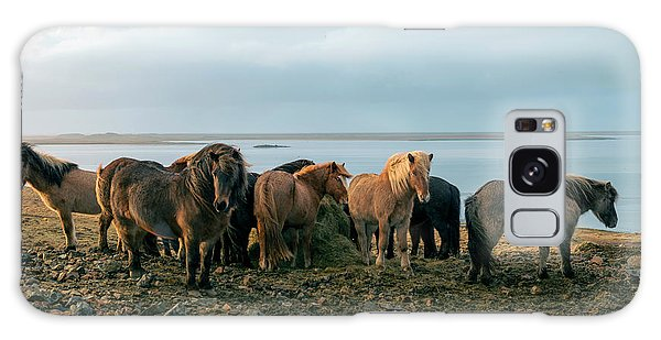 Horses In Iceland Galaxy Case