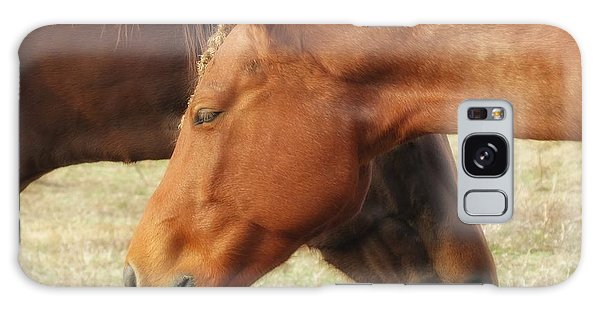 Horses In Sinc Galaxy Case