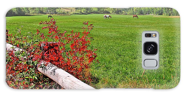 Horses In The San Juans Galaxy Case by Scott Mahon