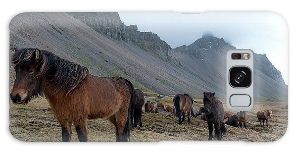 Galaxy Case featuring the photograph Horses Near Vestrahorn Mountain, Iceland by Dubi Roman