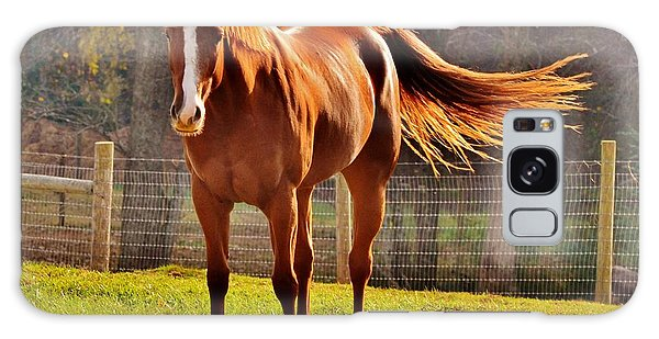 Horse's Tail Galaxy Case