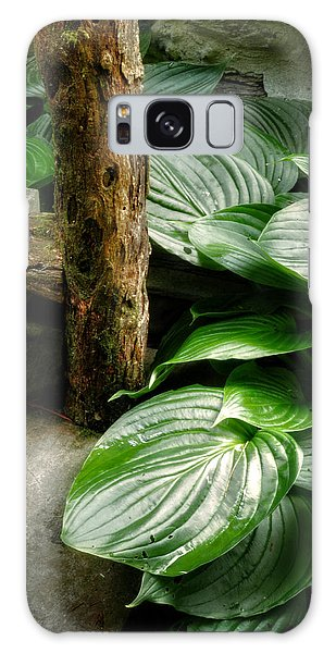Hosta And Steps Galaxy Case