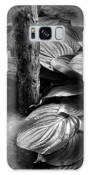 Hosta And Steps In Black And White Galaxy Case