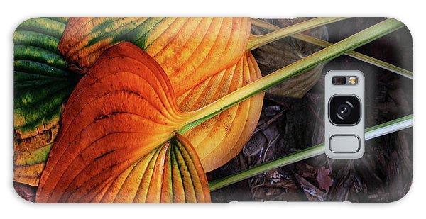 Hostas In Autumn Galaxy Case