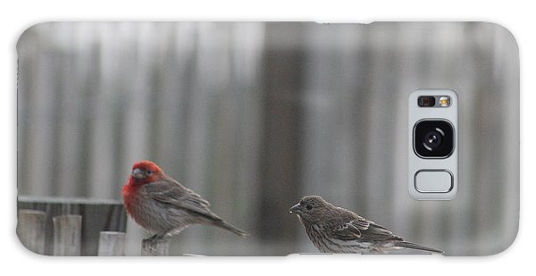 House Finches On The Fence Galaxy Case