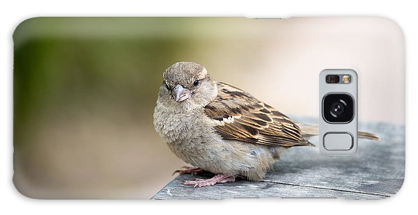 Galaxy Case featuring the photograph House Sparrow by Scott Lyons