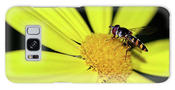 Galaxy Case featuring the photograph Hoverfly On Bright Yellow Daisy By Kaye Menner by Kaye Menner