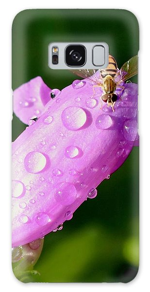 Hoverfly On Pink Flower Galaxy Case
