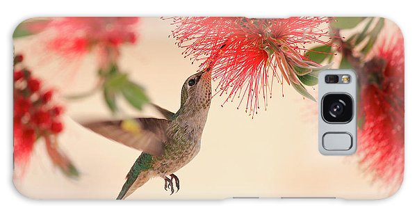 Hovering Hummingbird Galaxy Case by Penny Meyers