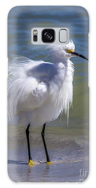 Egret Galaxy Case - How Do I Look by Marvin Spates