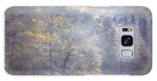Howe State Park In Winter Galaxy Case