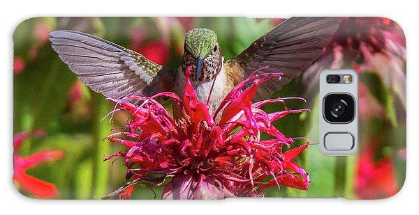 Hummingbird At Eagles Nest Galaxy Case