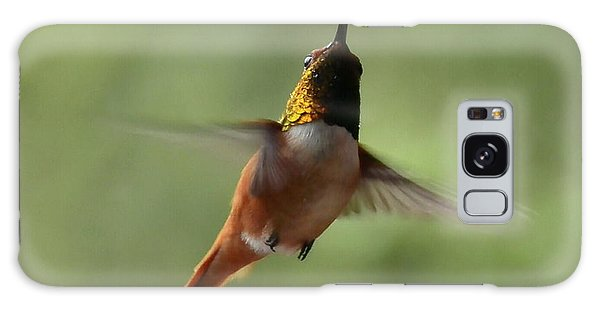 Humming Bird Galaxy Case