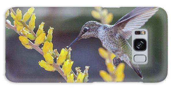 Hummingbird 6750-041818-1cr Galaxy Case