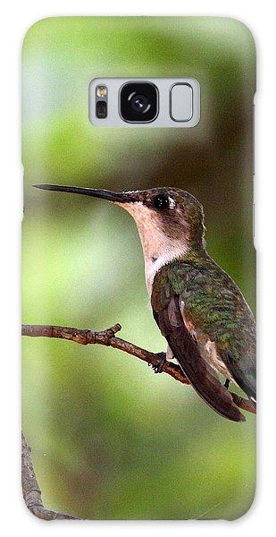Hummingbird - Afternoon Ruby Galaxy Case by Travis Truelove
