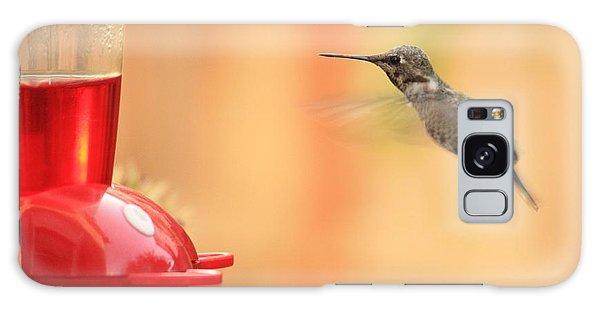 Hummingbird And Feeder Galaxy Case