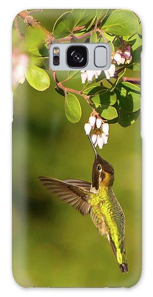 Hummingbird And Manzanita Blossom Galaxy Case