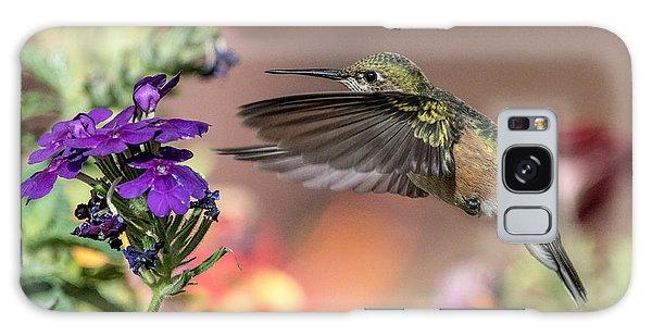 Hummingbird And Purple Flower Galaxy Case