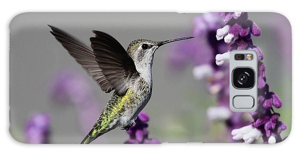 Hummingbird And Purple Flowers Galaxy Case