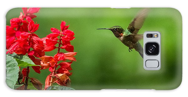Hummingbird And Scarlet Sage Galaxy Case